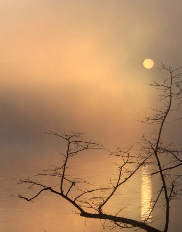 Moon on Lake photograhy by Lisa Ernst