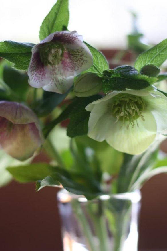Altar Flowers by Frankie Fachilla
