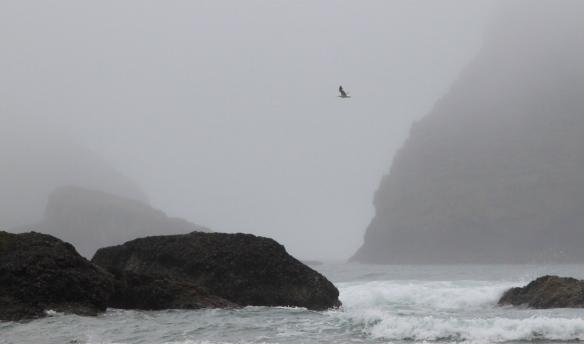 Oregon Rain photography by Lisa Ernst