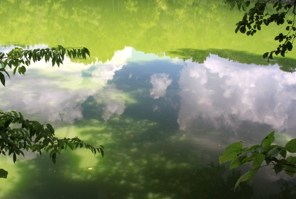 Still Lake reflecting the clouds and sky.   - Lisa Ernst