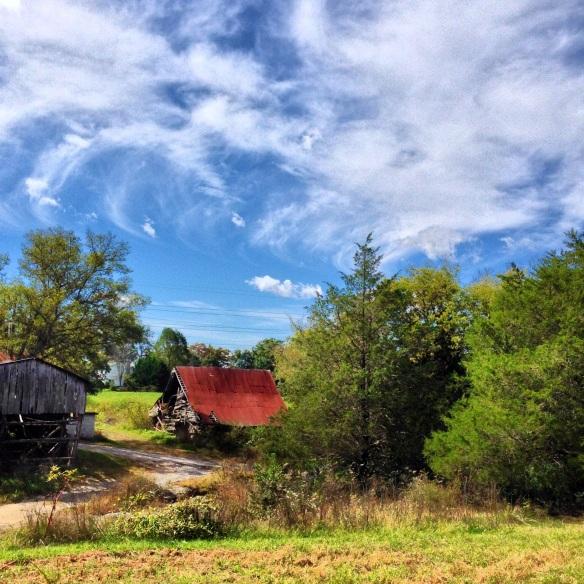 Patsy's Farm