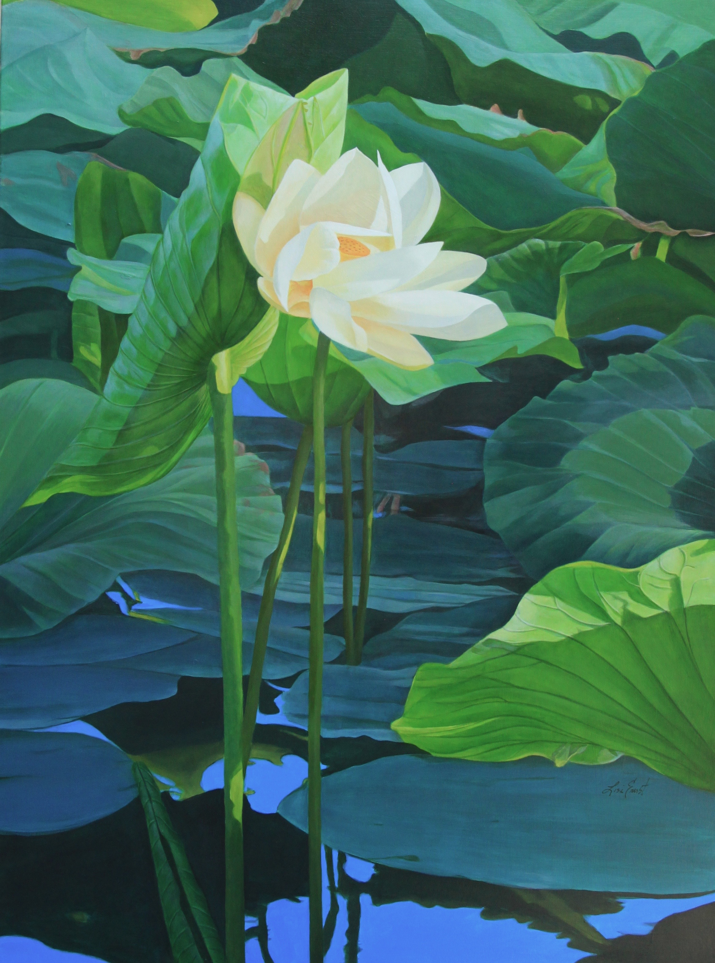 Lotus flowers and opening exhibit at franklins first friday art reelfoot lake lotus 48 x 36 acrylic on canvas izmirmasajfo